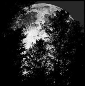 Full_Moon____by_MichiLauke